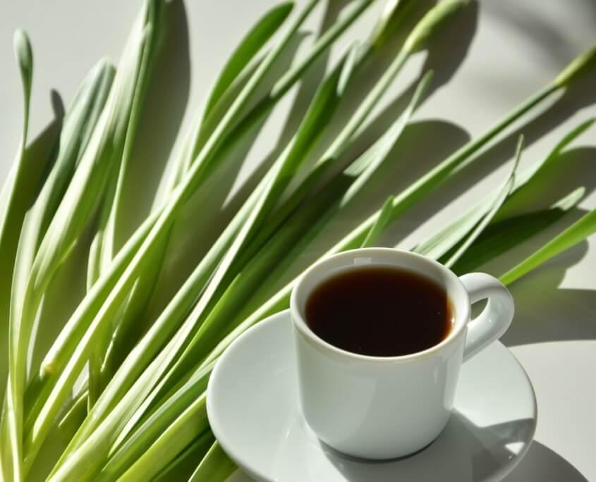 Originalcafé es Qualitätscode
