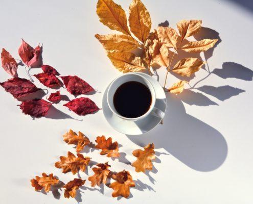 Cómo reconocer un buen café? El precio.
